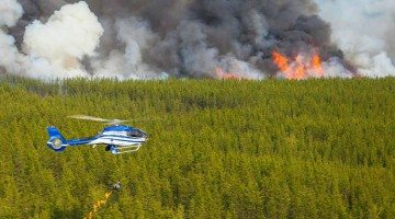 This image of wildfire ZF002, south of Behchoko, was uploaded by NWT Fire on 10 June, 2015