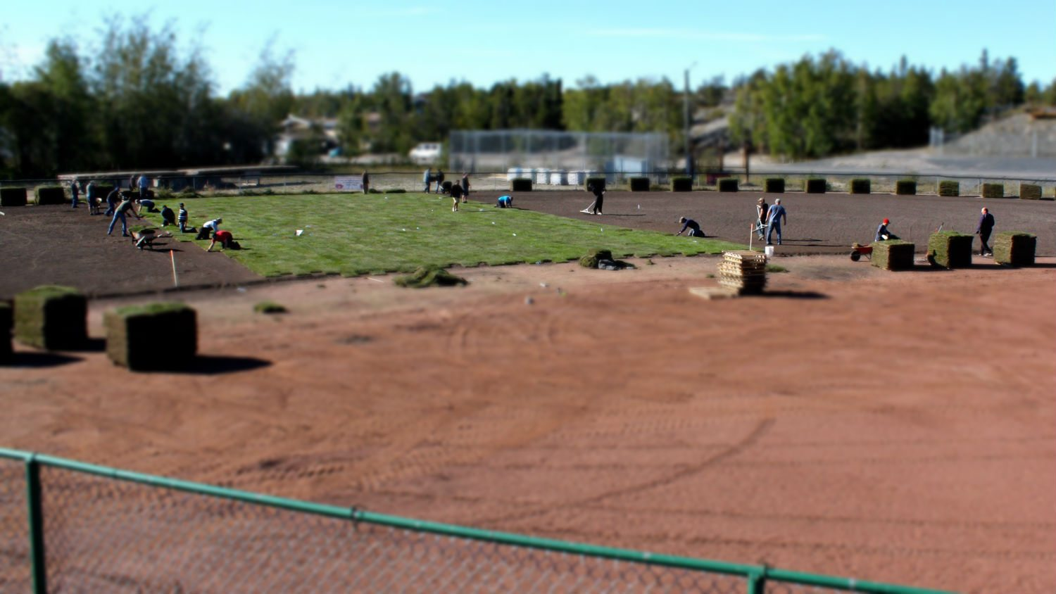 Grass laid at Tommy Forrest ballpark