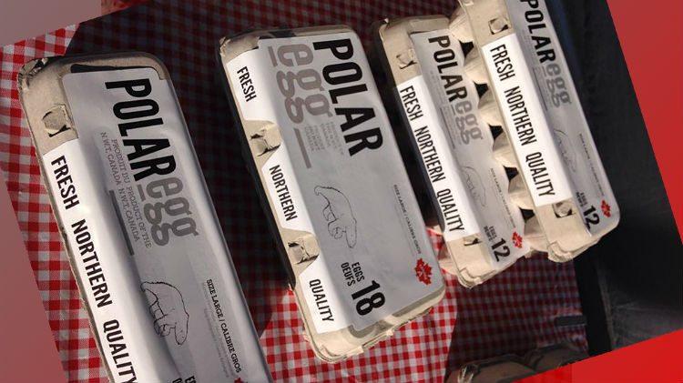 Polar Egg cartons