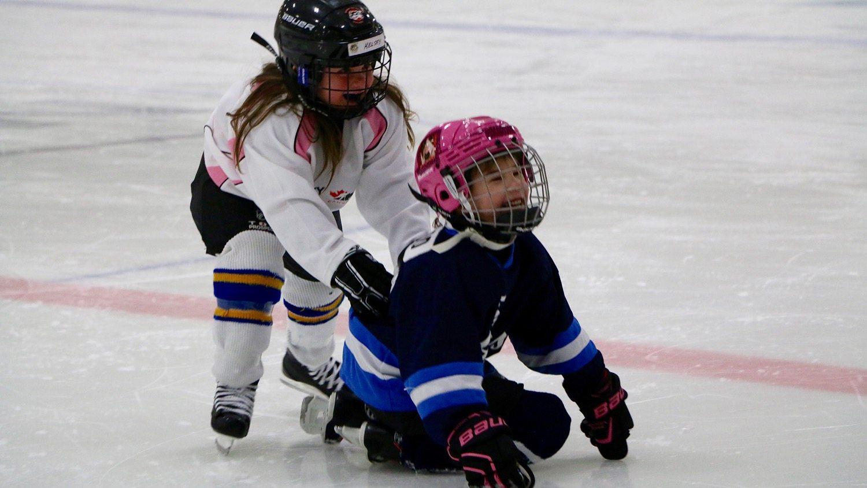 Hockey Day in Canada